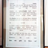 Text Ausstellung Kim Okura