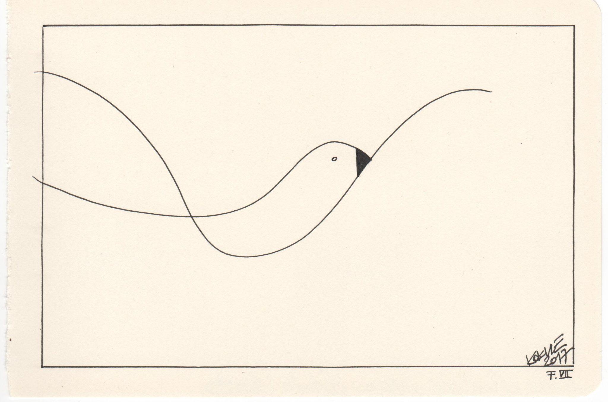 Kim Okura Flieg 7 Seagull ink drawing ATV 207