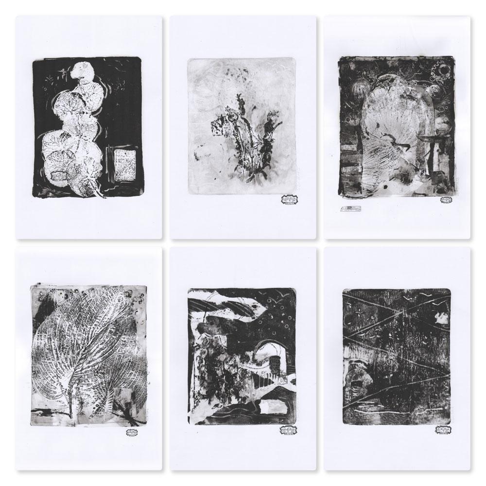Kim Okura Herbarivm Selection Vario Monotypien Unikat Originaldruckgrafiken