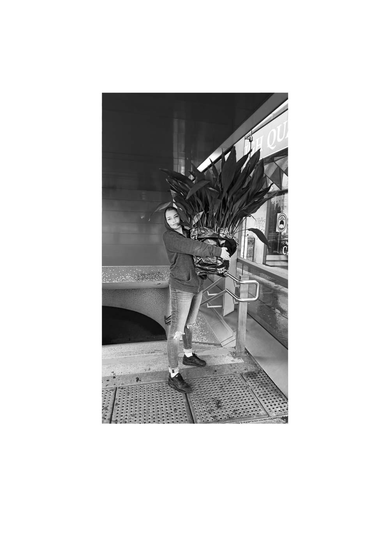 Kim Okura Projekt Wienliebe Schlepping & Chairing Coram Publico Performance Pflanze 2019